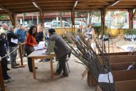 Valsequillo ha repartido más de 1.500 árboles frutales