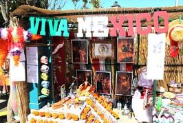 «Explosión multicolor» en el IV Encuentro Intercultural de Valsequillo (Galería Fotográfica)