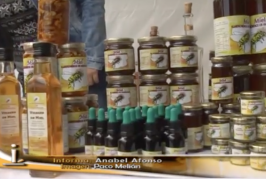 Resumen I Feria de la Abeja Negra Canaria y la Miel en Valsequillo.