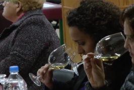 Segunda «Noche de Vinos» en Valsequillo.