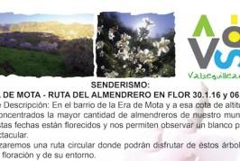 Valsequillo organiza dos senderos para disfrutar de la floración de los almendreros