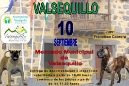 Valsequillo celebra el Concurso Monográfico de Perro Presa Canario