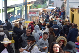 El Día del Turista ha sido un éxito, un año más, en Tenteniguada