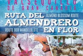 Consulte el Programa de la Ruta del Almendrero en Flor 2018 en Valsequillo de Gran Canaria.