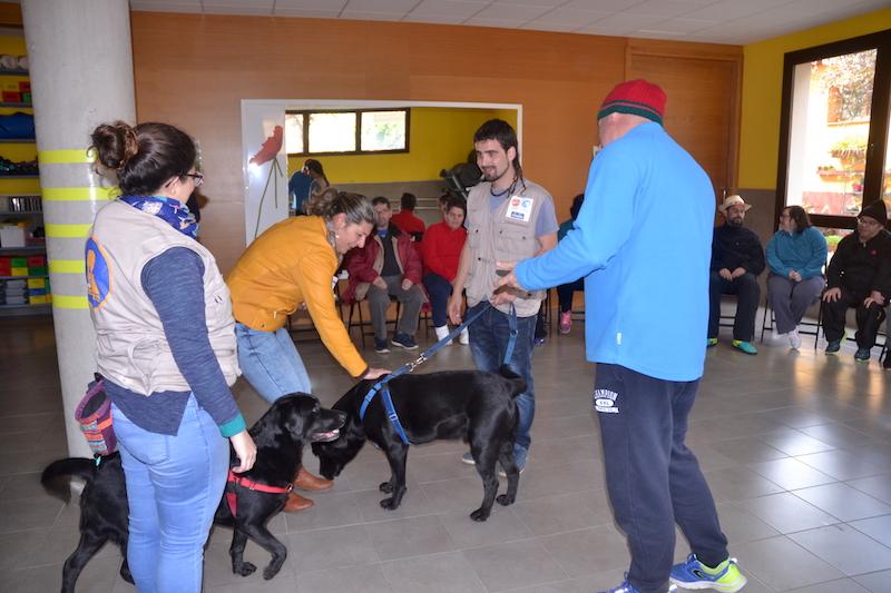 terapia canina centro ocupacional 2w