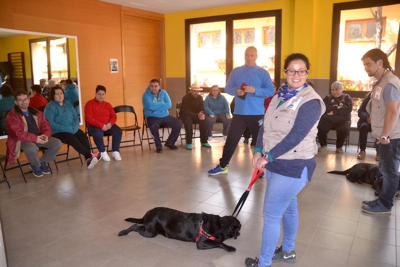 terapia canina centro ocupacional 4w