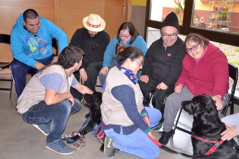 terapia canina centro ocupacional 5w
