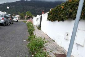 El PP de Valsequillo denuncia la falta de limpieza y mantenimiento en El Pedregal