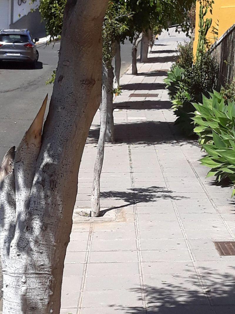 Mantenimiento barrios 3w