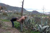 Valsequillo continúa con su plan de limpieza y mantenimiento de los senderos del municipio