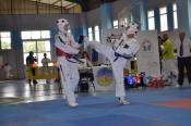 Se celebraron en Valsequillo los Juegos de Gran Canaria de Taekwondo