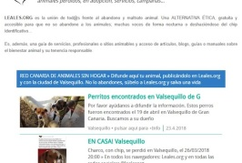 Valsequillo se suma a la Red Canaria de Animales sin Hogar