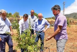 Valsequillo planta 4.400 árboles frutales en 14 hectáreas de suelo en desuso