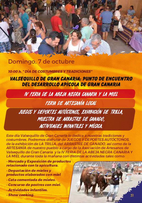 Programa Fiestas San Miguel 2018 31w