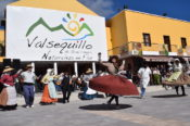 Miles de visitantes disfrutan de la Ruta del Almendrero en Flor en Valsequillo