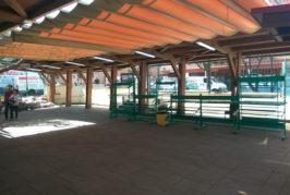 "Asamblea Valsequillera: ""Ni mercadillo, ni parque infantil"""
