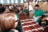 Valsequillo se desborda con 16.000 asistentes en su Feria de la Fresa
