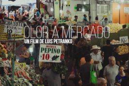 La Casa de Colón proyecta una selección de cortos iberoamericanos y canarios en el marco del ciclo 'Colón Cinema'