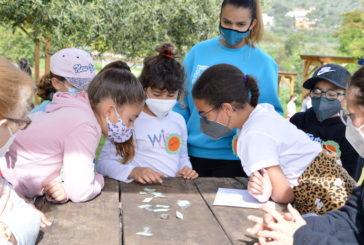 Los escolares de Valsequillo descubren la historia del pueblo