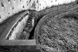 La conflictividad ruidosa por el agua en Canarias y el patrimonio del agua en Tenerife, en el primer día de las XI Jornadas de la Cultura del Agua